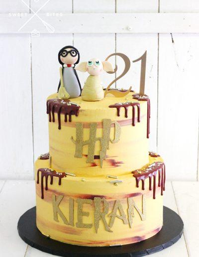 harry potter dobby 21st birthday cake