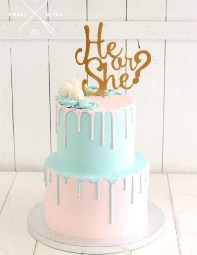 gener reveal baby shower he or she cake