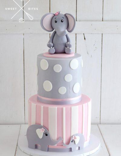 baby elephant girl birthday 1st cake