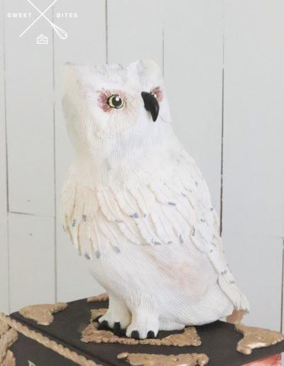 owl 3d cake books harry potter hedwig